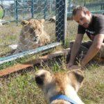 Leo durante uno degli incontri con Sissi